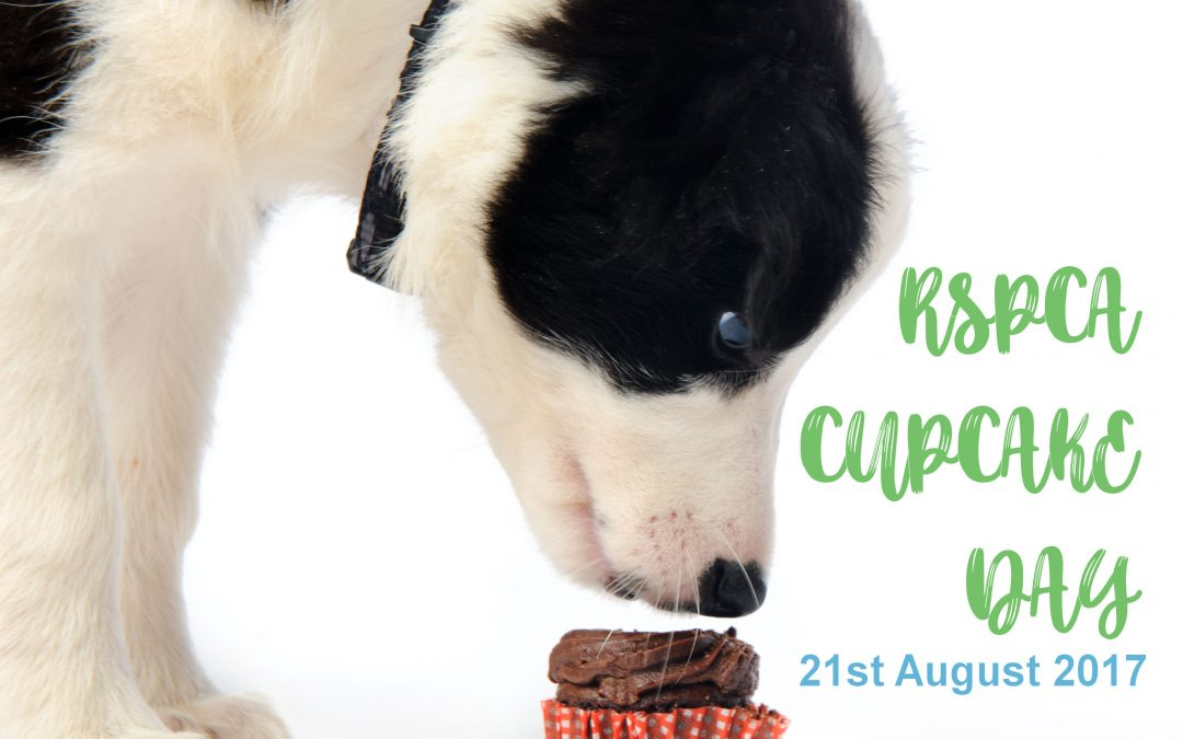 RSPCA Cupcake Day – 2017