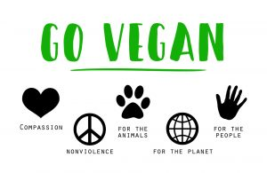 Melbourne Collective Vegan Market